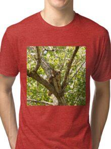 Peek a boo I see you Tri-blend T-Shirt
