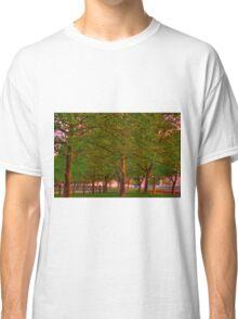 Seabrook Road Treeline at Dawn Classic T-Shirt