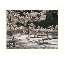 Cherry Trees And Boating Party Art Print