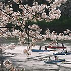 Cherry Trees And Boating Party by davidandmandy