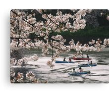 Cherry Trees And Boating Party Canvas Print
