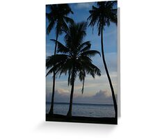 Three Beach Palms Greeting Card