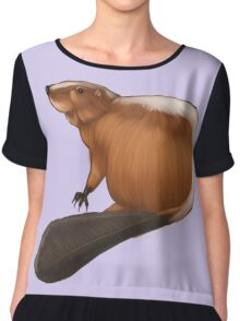 Beaver 1 Chiffon Top