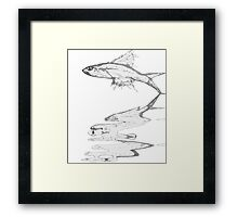 Fish Reflection Framed Print