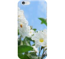 Anacahuita Blossoms  iPhone Case/Skin