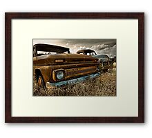 Brothers from another mother Framed Print