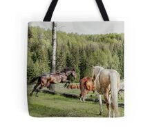 Percheron Thoroughbred Jumper Artwork Tote Bag
