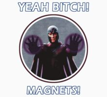YEAH BITCH! MAGNETS! by mist3ra