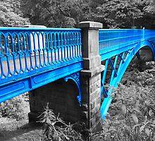 Balgay footbridge Dundee by markw123