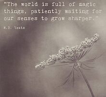 The World is Full of Magic Things by Maren Misner
