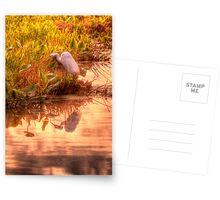 Dawn Mannington Meadows, It's Going to be a Great Day Postcards