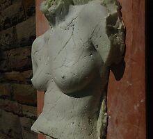 Expanding foam torso image by Kathryn Anne Trussler