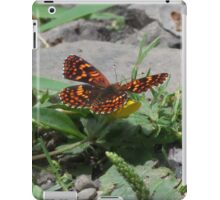 Northern Checkerspot iPad Case/Skin
