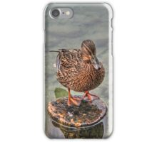 Posing Duck iPhone Case/Skin
