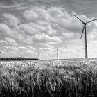 Wind Turbines by 242Digital