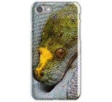 Serpiente 2 Zoo iPhone Case/Skin