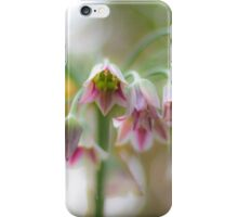 agapanthus bells iPhone Case/Skin