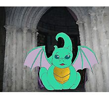 D is for Dragon Photographic Print