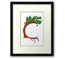 Alphabet of Desire: C (color) Framed Print