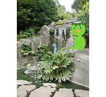 K is for Kappa Photographic Print