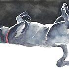 Cat Naps: The Dead Cat by Denise Faulkner