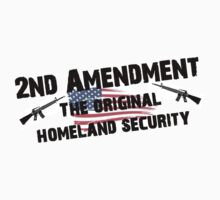 2ND AMENDMENT ORIGINAL HOMELAND SECURITY SHIRTS STICKERS POSTERS PILLOWS by 8675309