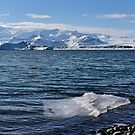 Cold Waters by Svetlana Sewell