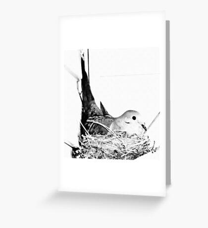 Nesting Mama Greeting Card