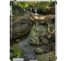 Sweet Serenity iPad Case/Skin