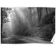Jesus Light on Mountain Track Poster