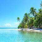 Sea and Palm Trees in French Polynesia by WAMTEES