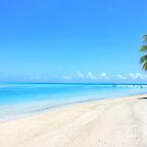 Paradisiac beach in French Polynesia by WAMTEES