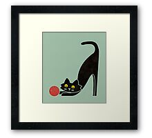 The curious cat Framed Print