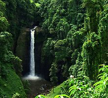 Sopoaga Falls Samoa by davidandmandy