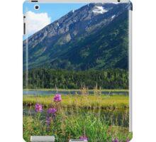 July at Tern Lake II iPad Case/Skin