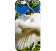 White Wing iPhone Case/Skin