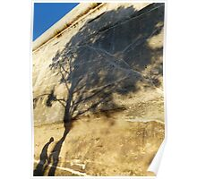 Shadow Tree Poster