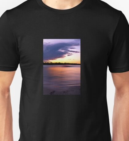 Turns me to Gold in the sunlight T-Shirt