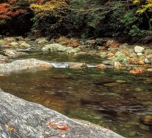 East Fork of the Pigeon River Sticker