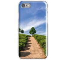 Standing in the green tea field iPhone Case/Skin