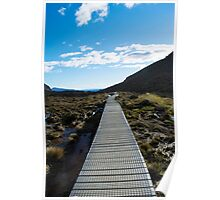 Boardwalk in Tongariro National Park (4) Poster