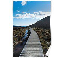 Boardwalk in Tongariro National Park (5) Poster