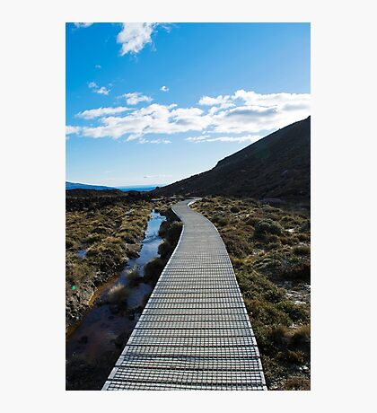 Boardwalk in Tongariro National Park (5) Photographic Print