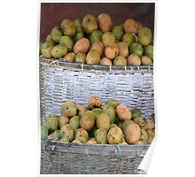 mango fruit Poster