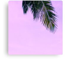purple palm serenity Canvas Print