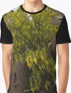 Beautiful Golden Chain Tree in Full Bloom Graphic T-Shirt