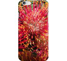Wildfowers iPhone Case/Skin