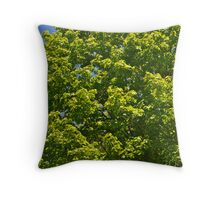 Maple Tree leaves Throw Pillow