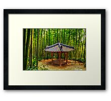 Resting among the bamboo forest Framed Print