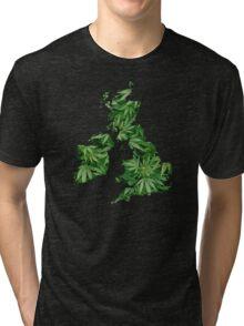 Hempland Tri-blend T-Shirt